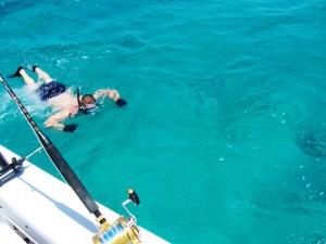 Snorkeling at Turneffe Belize