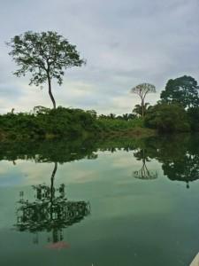Cotton Tree Lodge kayaking