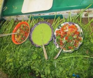 Chetumal Mexico Expo Food Vendors
